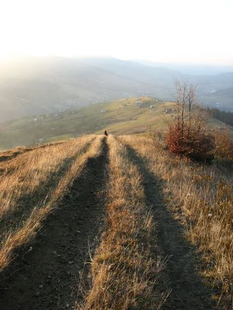 Track-way. Mountainous track in the autumnal evening in the Carpathians.