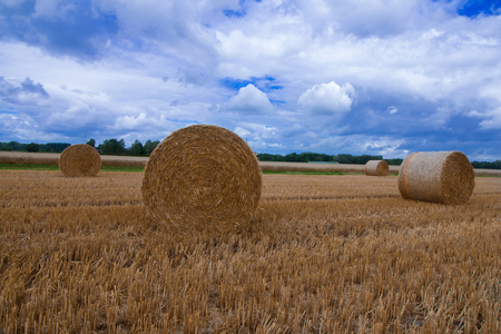 A large hay bale after the harvest Stock Photo