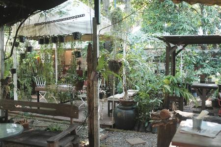 morning Urban life scene.Coffee table in backyard.Setting backyard Outdoor Evening Drinks Party Stok Fotoğraf