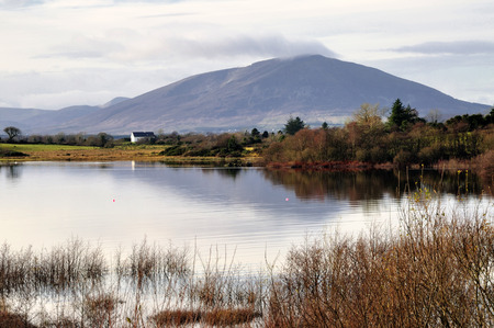 variously: Nephin at 806 metres (2646 ft), is the second-highest peak in Connacht (after Mweelrea), Ireland. It is to the west of Lough Conn in County Mayo. Néifinn is variously translated as meaning heavenly or sanctuary.