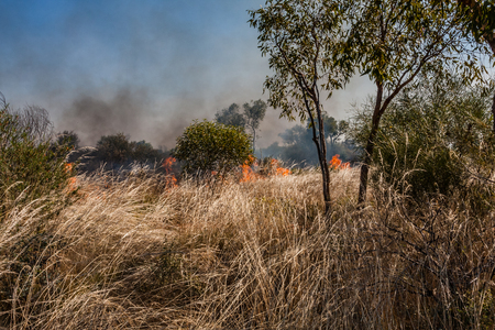 Bushfire in the Australian outback Stock Photo