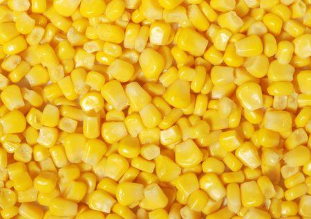 Sweet corn kernels photo