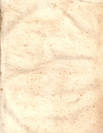 Original Antique Seventeenth Century PAPER Texture with space for your design or text.