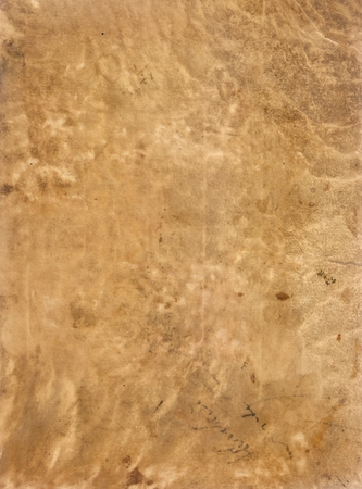 seventeenth: Original Antique Seventeenth Century Sheepskin PARCHMENT PAPER Texture with space for your design or text. Stock Photo