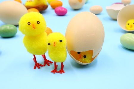 Easter Composition with funny Chicks