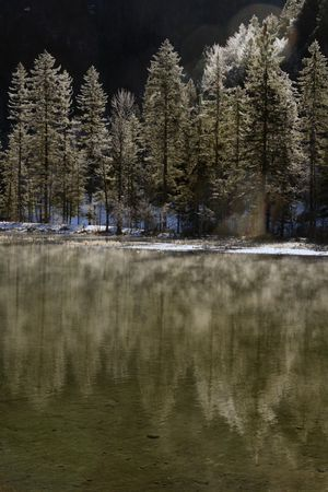 Morning light creates a reflection of snowy trees in a shallow pond Stock Photo - 852028