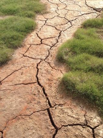 The ground looks dry but it sinks which was pretty crazy Stok Fotoğraf
