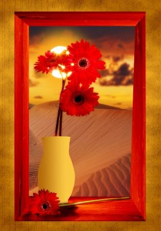 red flowers in window photo
