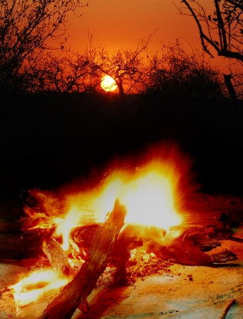 camp fire outdoors at sunset photo