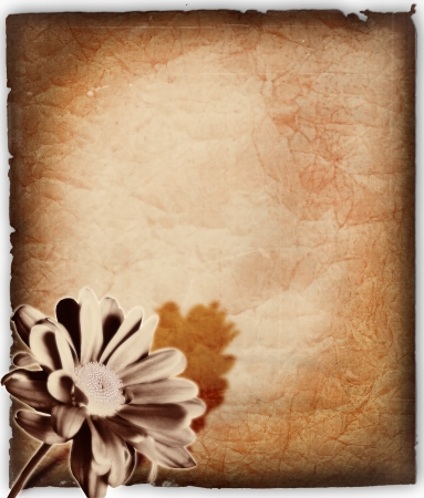 old paper and flower