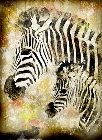 spattered: zebra grunge Stock Photo