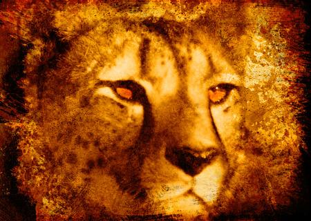 Grunge Cheetah