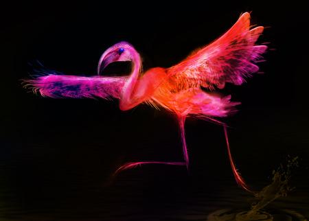 Abstract bird   Flamingo on black