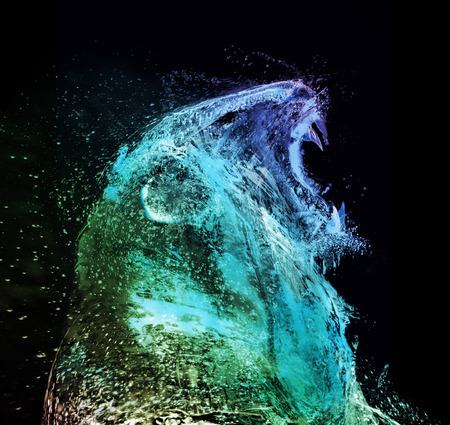 growling: Lion abstract water splash
