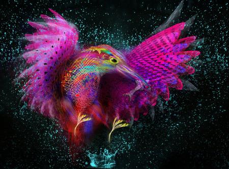 kingfisher  Abstract bird  splashes