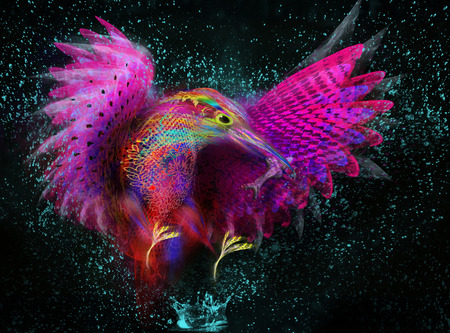 kingfisher  Abstract bird  splashes photo