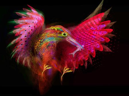 kingfisher  Abstract bird