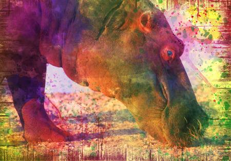 hippo on grunge