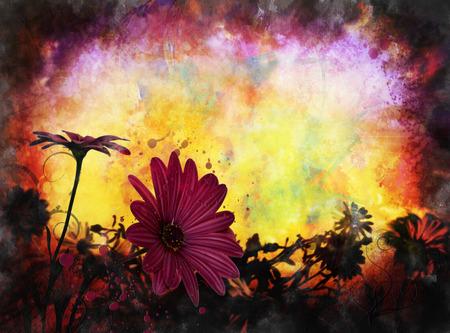 grunge daisy in sun