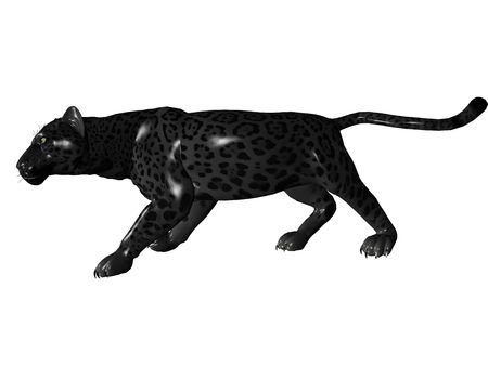 majesty: 3D rendered image of Black panther on white background an isolated