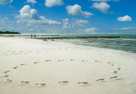 lonesome beach with tracks photo
