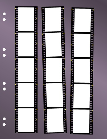 negative film contact sheet, blank frames, space for pix Vector