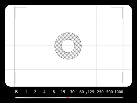 Classic SLR viewfinder, with free space for your pics Vector