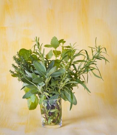herbage: bunch of various fresh herbage