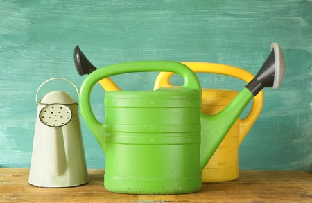 galvanised: watering cans, free copy space