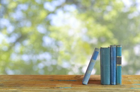 Row of books nature background free copy space Stock Photo