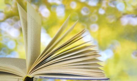libros antiguos: libro abierto en el fondo de la naturaleza borrosa, copia espacio libre
