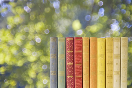 old books: row of books on blurred nature background, free copy space