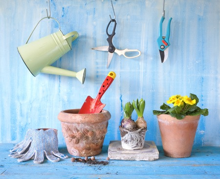 gardening with spring flowers and gardening tools