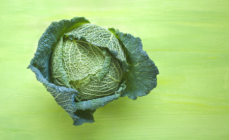 savoy cabbage: Savoy cabbage on green background, free copy space