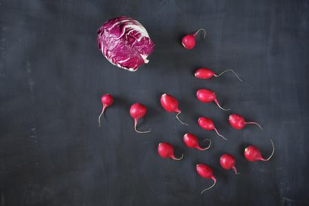 radicchio: radicchio and radish, flat lay, good copy space Stock Photo