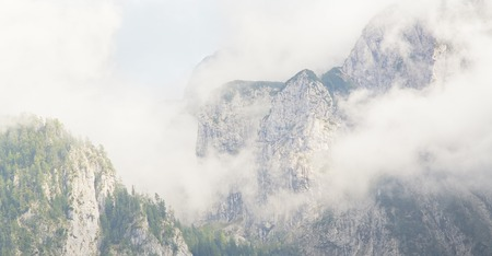 hillsides: foggy mountains in the alps with cloudy hillsides and trees