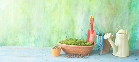 gardening in the springtime,garden utensils and seedling,planting herbs