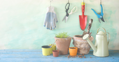 Gardening utensils, springtime gardening, seedlings and flower pots