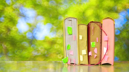 row of books on a  blurred green tree background, free copy space