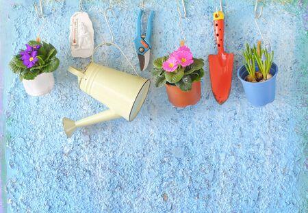 flowers and gardening utensils, springtime gardening, good copy space