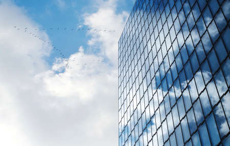 Facade of modern skyscraper with reflection of cloudy sky and a flock of birds, low angle shot, free copy space