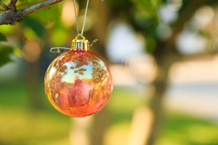 customs and celebrations: Christmas baubles on chrismas tree
