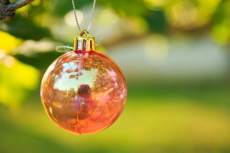 chrismas: Christmas baubles on chrismas tree