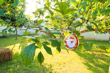 chrismas: Santa Claus in baubles on chrismas tree,santa