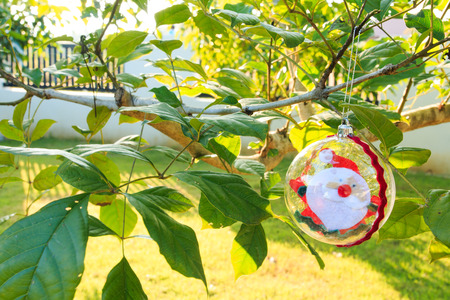 customs and celebrations: Santa Claus in baubles on chrismas tree,santa