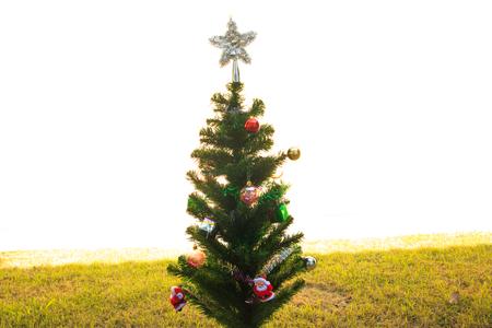 silhouettable: Christmas Tree on blue background,chrismas day Stock Photo