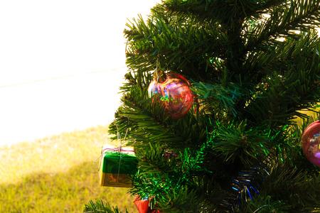 customs and celebrations: Christmas Tree on blue background,chrismas day Stock Photo