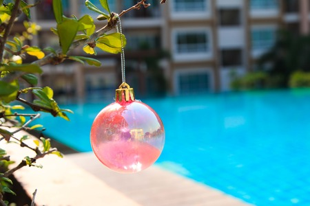 silhouettable: Christmas baubles on chrismas tree on  tree,near at pool