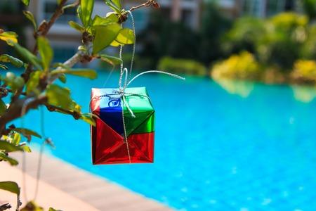 silhouettable: gift box on chrismas tree on  tree,near at pool