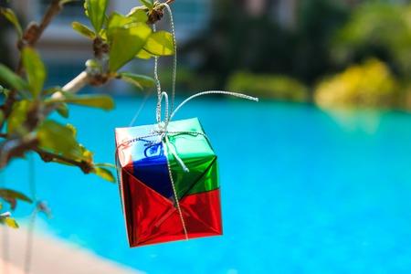 chrismas: gift box on chrismas tree on  tree,near at pool